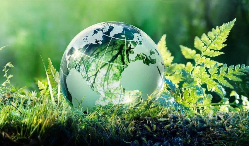 Экология және қоршаған орта